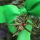 grüner tannenzweig mit einer grünen schleife thema ist adventszeit stressbewaeltigung wie finde ich die vorfreude wieder Stressbewältigung Adventszeit Lifecoach Sandra Rumen Praxis Leb-Neu