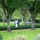 ein braupaar in einem park thema ist sich in der paarberatung hilft sich neu zu entdecken was erwartet sie in der paarberatung
